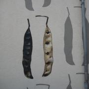 21 EG Stahl Brandenburg, Illusionsmalerei, trompe l'oeil  Malerei,Fassadengestaltung, Giebelmalerei, Fassadenmalerei,