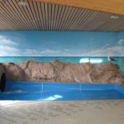 Schwimmbad, Hallenbad,Sauna, Mit einer stimmungsvollen Innenraumgestaltung verwandeln Sie Ihre Praxis, Büroräume, Verkaufsräume, Indoorspielplatz oder Schwimmbad und schaffen eine angenehme Atmosphäre. Geben Sie Ihren Räumen ein neues Gesicht.